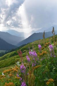 Где-то в горах (2)