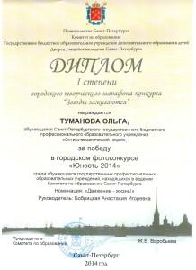 Диплом I степени Туманова Ольга.jpeg
